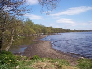Lough_Neagh_at_Shane's_Castle_-_geograph.org.uk_-_155427